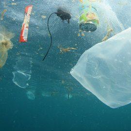 Teremos mais plásticos do que peixes nos oceanos
